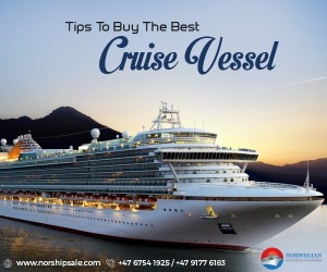 Tips To buy the Best Cruise Vessel